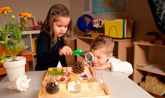 diferencias entre educacion tradicional y metodo montessori